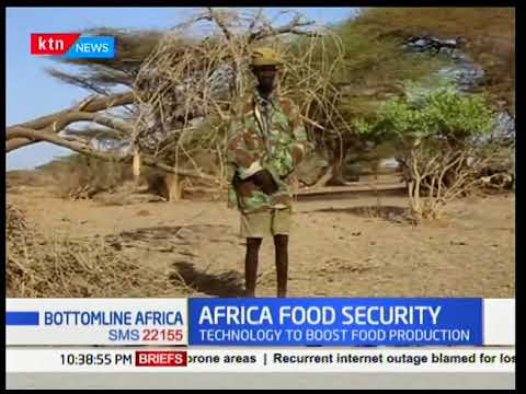 Bottomline Africa: Africa food security