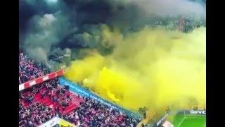 1.FC Köln - Dynamo Dresden Rauchbombe