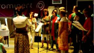 popkoor sing for joy elburg Africa Unite