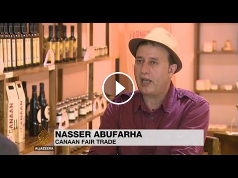 AL MASOUD TRADING: AL JAZEERA, OLIVE HARVEST IN WEST BANK, PALESTINE.
