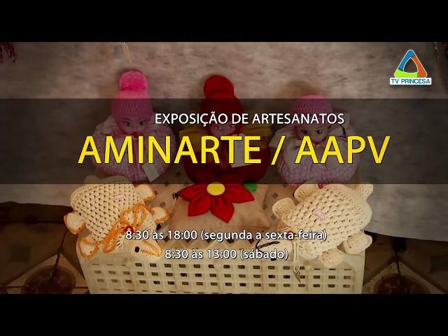 Exposição AAPV e Aminarte no Theatro Capitólio - TV Princesa