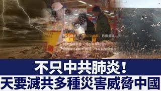 不只中共肺炎!多種災害疫情威脅中國 新唐人亞太電視 20200503