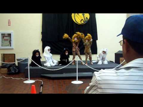 Cats Musical performed by kids