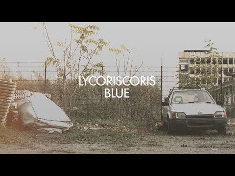 Lycoriscoris - Blue