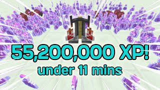 I Got Alchemy 50 In Under 11 Minutes (Speedrun) | Hypixel Skyblock
