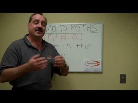 Mold Removal Myths- Myth # 2 Bleach is the Answer