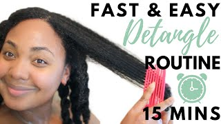 QUICK & EASY DETANGLING ROUTINE IN 15 MINUTES or LESS | Natural Hair