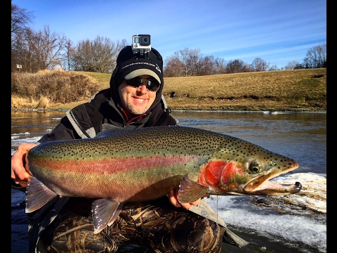 Fishing Report - Wisconsin Steelhead Fishing
