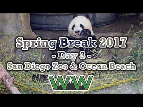 Spring Break 2017 - Day 3: San Diego Zoo & Ocean Beach