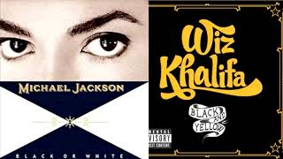 Black or Yellow (Black or White x Black and Yellow)