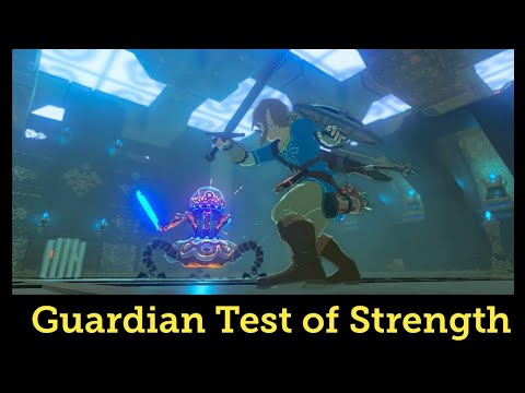The Legend of Zelda: Breath of the Wild | Shrine Test of Strength