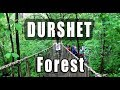 Durshet Forest Lodge Resort Nature trails | #UrIndianConsumer | Marathi Vlog