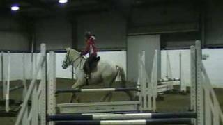 showjumping...3 year old novice horse first time jumping courses.(lisa ho)