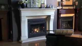Napoleon Appliance Corporation Company Profile Official   eFireplaceStore com