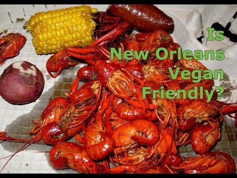 Is New Orleans Vegan Friendly Vlog?