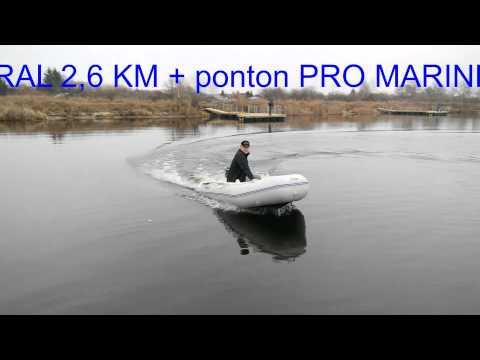 Silnik CAPRAL 2,6 KM + ponton PRO MARINE FORSAGE 320