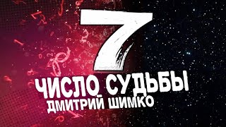 "Число Судьбы ""7"". Астротиполог - Нумеролог - Дмитрий Шимко"