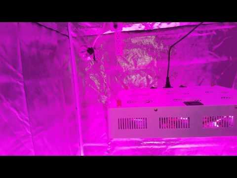 part# 2 start up of the shenzhen houyi lighting company's HYG03-9X100W-W