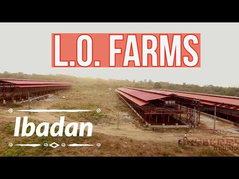 LO Farms, Ibadan, Nigeria 4K
