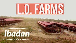 LO Farms, Ibadan, Nigeria