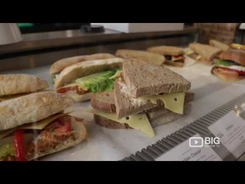java-u-cafe-coffee-shop-in-london-uk-serving-paninis-and-smoothie