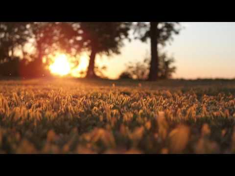 Zac Saber - Soak Up The Sun