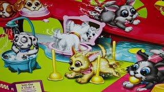Pet Parade / Akademia Psiaka - Playground with Accessories / Plac Zabaw z Psiakiem - EPEE - EP02230