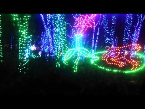 Shady Brook Farm Light Show