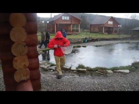 рыбалка на форель свердловская область