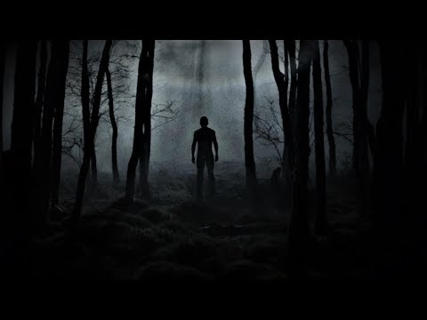 3 True Creepy Forest Horror Stories [Creature Encounter ,Haunted Cabin &  MORE!]
