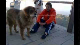 Personal Pic of Sachin Hanging out with family in Mussoorie after ODI retirement  [HD]