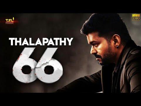 Thalapathy 66 படம் குறித்து கசிந்த புதிய தகவல் - இயக்குனர் இவரா? | THalapathy Vijay | HD