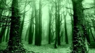 видео GreenWord.ru: лес