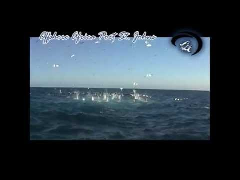 Offshore 15S