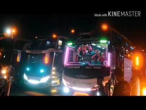 Dj aku jatuh cinta pada jamila versi bus