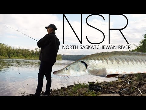My First Fish From The NSR! | HUGE STURGEON JUMPS 5 FEET IN THE AIR!!!