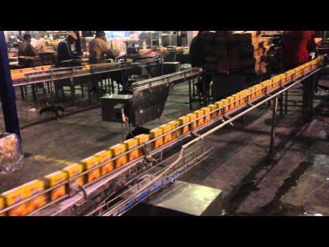 Tetrapak 250ml Packing Process
