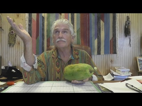Q&A 347 - Hybridized Fruits, Parasites, POTS, Restless Leg