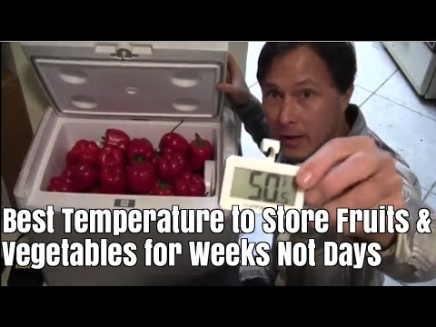 Best Temperature to Store Fruits and Vegetables So they Last