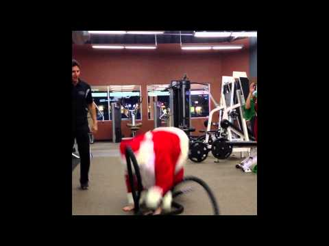 Fat Santa Claus Gets Fit And Shredded For...