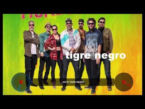 TIGRE NEGRO  REGGAE ENTREVISTA EN FMDELROCK ARGENTINA