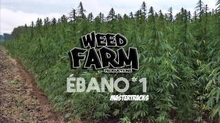 [MASTER TRACK *1] ÉBANO (Weed Farm Productions)