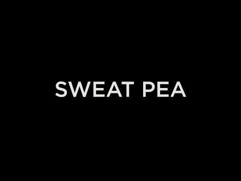 SMAN 1 GORONTALO - SWEET PEA