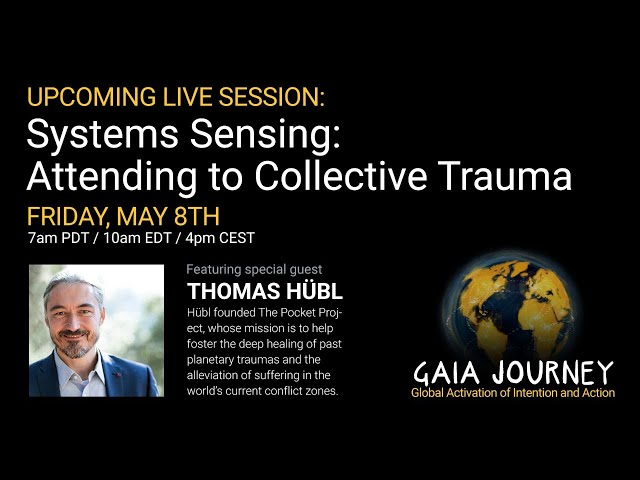 Systems Sensing: Attending to Collective Trauma - with Thomas Hübl