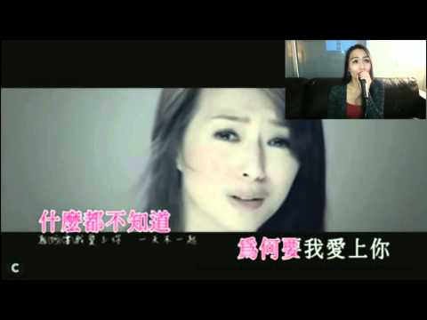 為何要我愛上你 Why Should I Love You KTV Karaoke