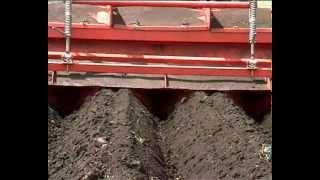 Выращивание картофеля по европейским стандартам