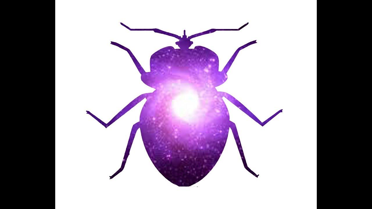 bug.mov