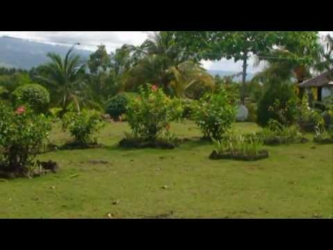 Phil-Cebu Realty, Development & Supply - Moalboal Rest House For Sale 1.750 Hectares 25M