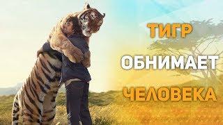 Животные тоже любят обниматься. Дружба Людей и Животных.