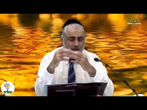 הרב חיים דרשן - כשרות המטבח היהודי- שידור חי